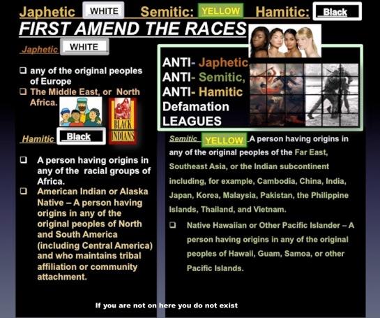 Hamitic Semitic Japhetic