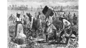 061912-national-this-day-black-history-slavery