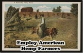 employ-American-Farmers-Hemp-farm_thumb