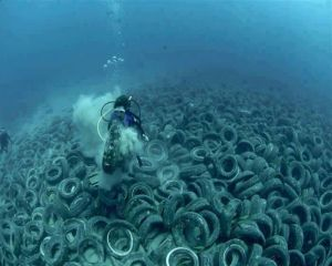 One Tire At A Time! Help Us Remove This Ocean Pollution!