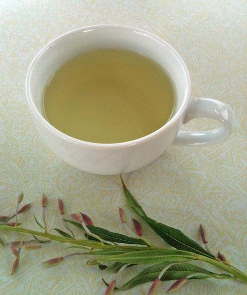 Fireweed-Tea