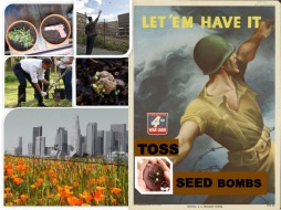 Toss seedbombs to heal your own community;everything good comes from plants