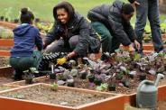 michelle-obama-white-house-garden-590jn032511