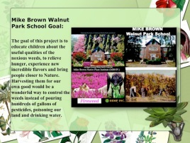 Mike Brown Walnut Park School Goal: