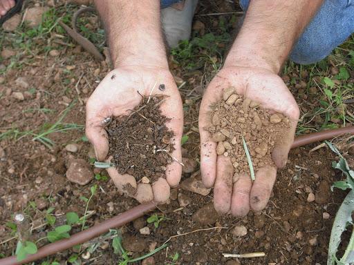 soil01